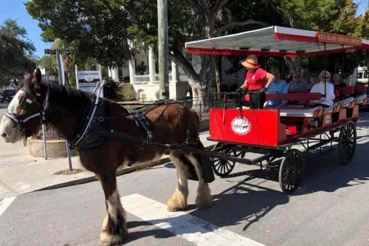 My top Beaufort tip: immerse in the history of the region with a history tour like this carriage tour with Sea Island Carriage Company.