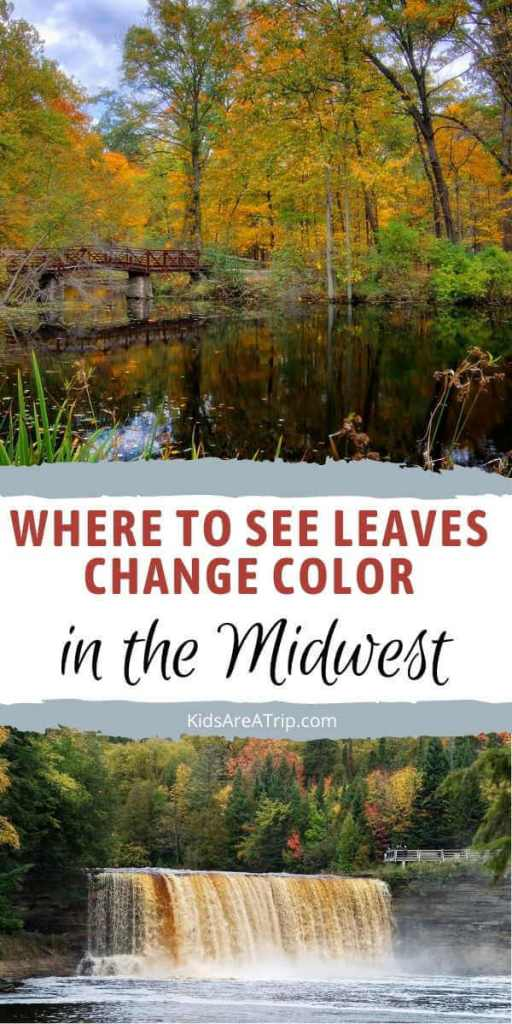 Where to See Leaves Change Color in the Midwest