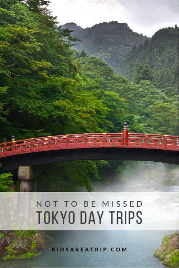 Easy Day Trip from Tokyo-Kids Are A Trip