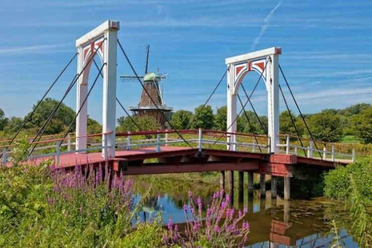 DeZwaan windmill Holland Michigan-Kids Are a Trip