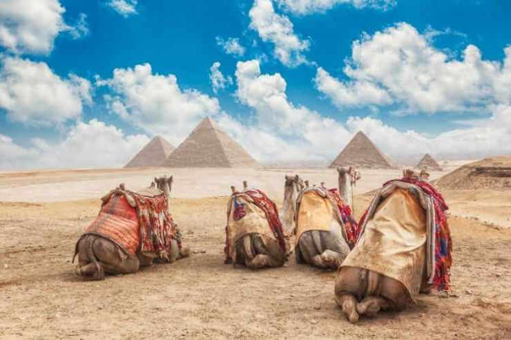 Cairo Egypt with kids-Kids Are A Trip