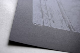 Gravity, Screen Print