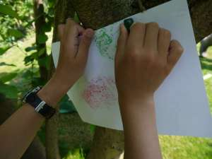 crayon rubbings