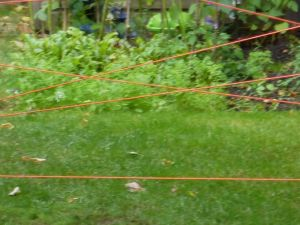 forcefield from rope