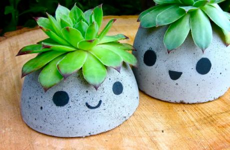 OMG Adorable Concrete Planter Tutorial