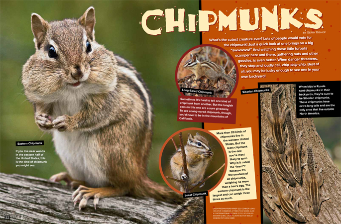 Chipmunks Ranger Rick October 2017 1