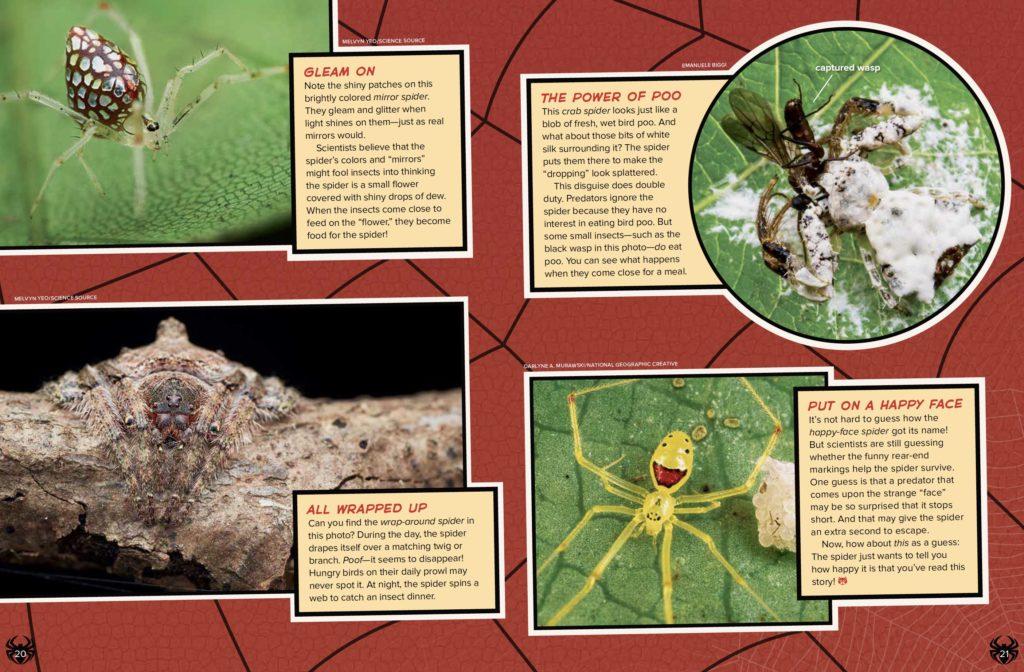 Weird Spiders Ranger Rick August 2017 3