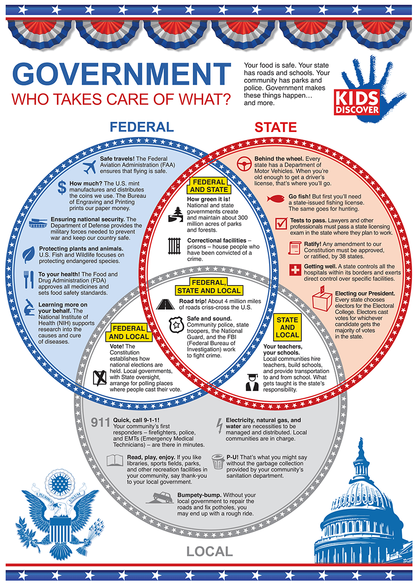 Infographic 3 Levels Of The Us Government  Kids Discover