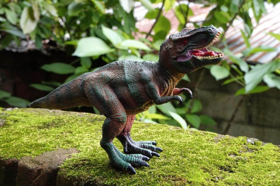Dinofeest