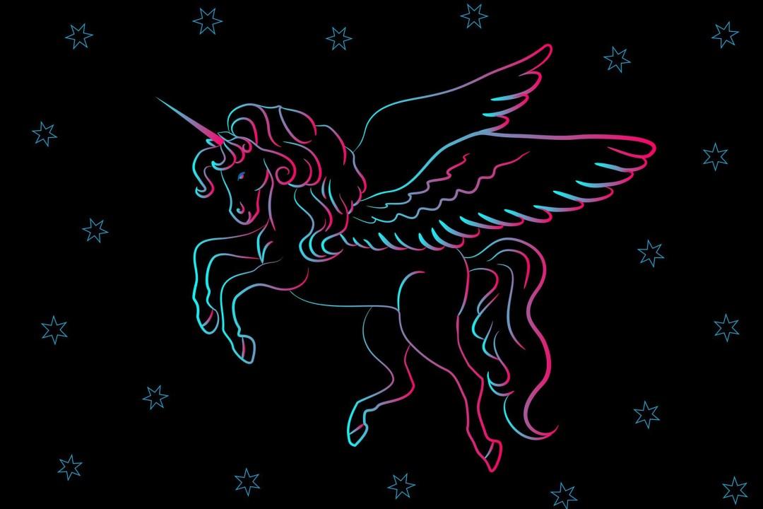 kinderfeestje, kinderpartijtje, unicorn, eenhoorn