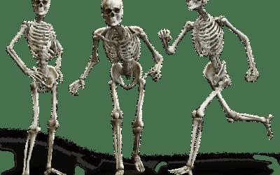 Manieren op sterke botten te bouwen