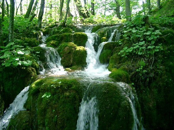 mother-natures-lush-green-waterfall