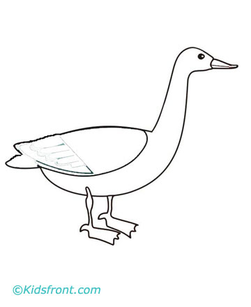 Goose Coloring Pages Printable