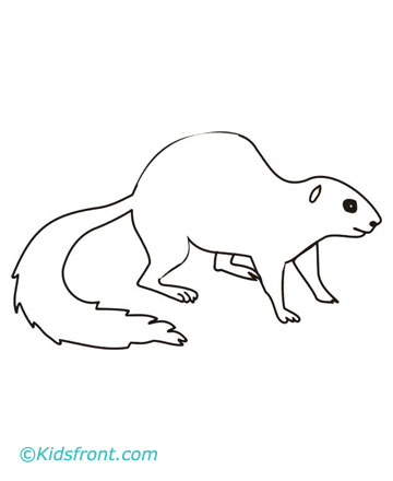 Mole Coloring Pages Printable