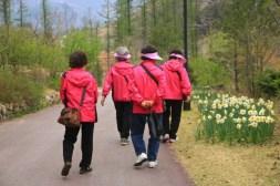 Korean Ajummas Jade Garden Korea