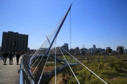 Yeouido Ecological Park and Saetgang Bridge