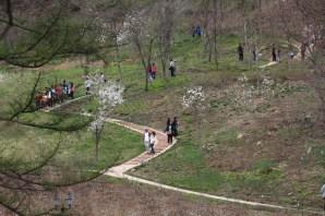 Garden trail Jade Garden Korea