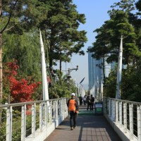 Free bike riding from Oksu Station (옥수역) Line 3 to Seoul Forest (서울숲)