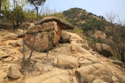 Samseongsan hiking