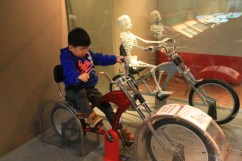 Gyeonggi Children's Museum – how the body work