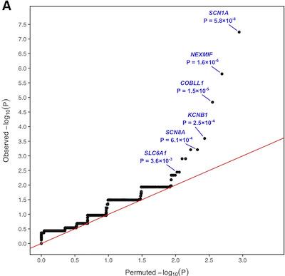 Epilepsy associated genes