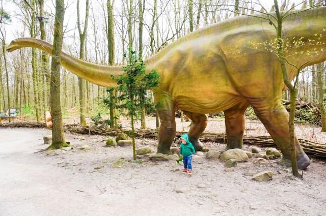 Dierenpark Amersfoort _ Kidshoekje.nl