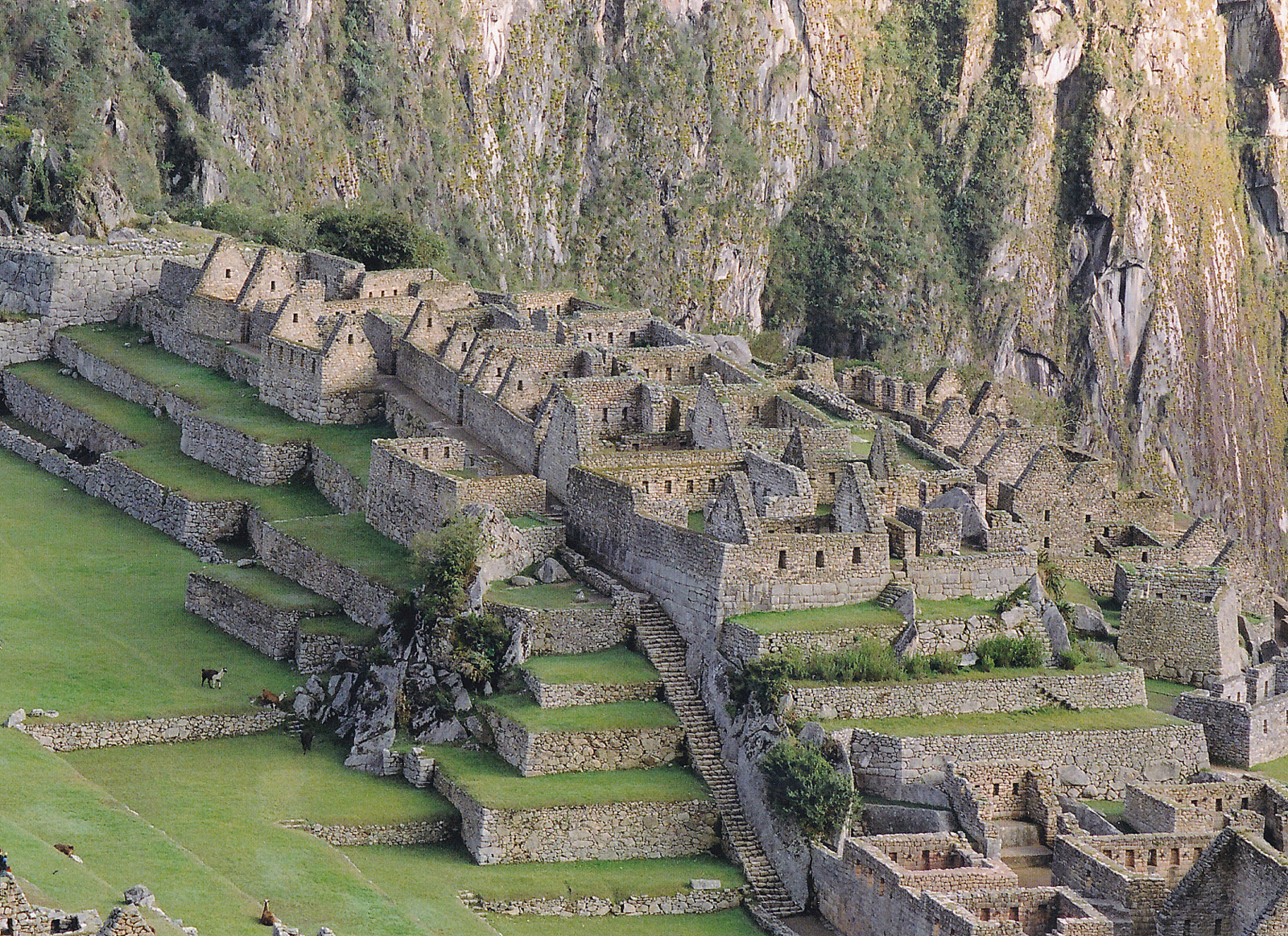 Ancient Inca Facts Amp Worksheets