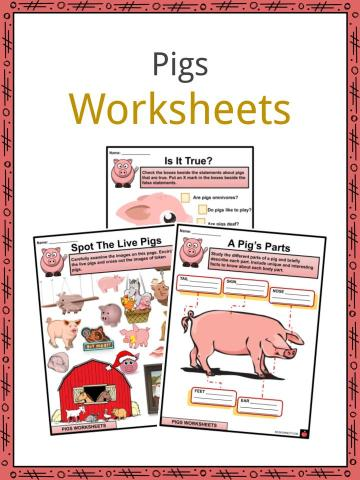 Pigs Worksheets