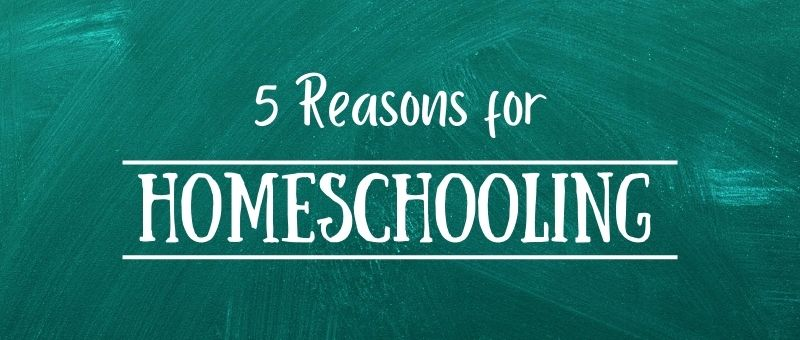 5 reasons for homeschooling