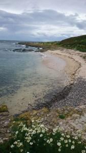 Image of isolated-beach-on-inner-farne