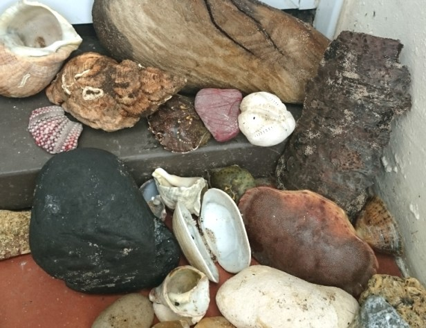 selection-of-shells-and-stones-on-doorstep