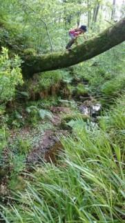 Image of girl balancing on log high over a stream