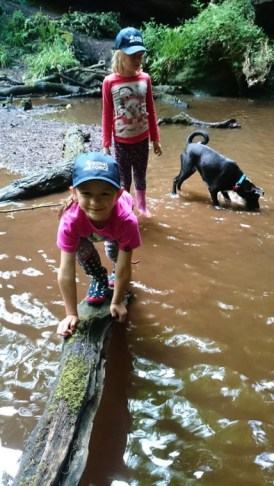 Image of girls in peaked caps with dog on log in stream river