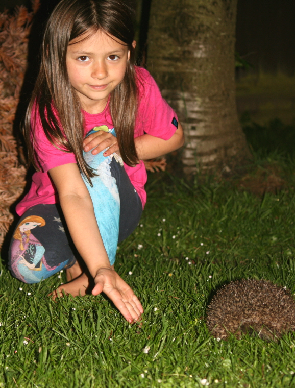 child-squatting-in-dark-garden-holding-hand-out-to-feed-hedgehog
