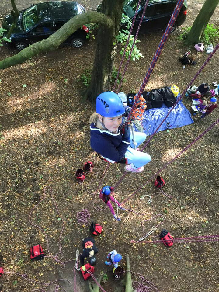 Image of girl-climbing-tree-viewed-from-above