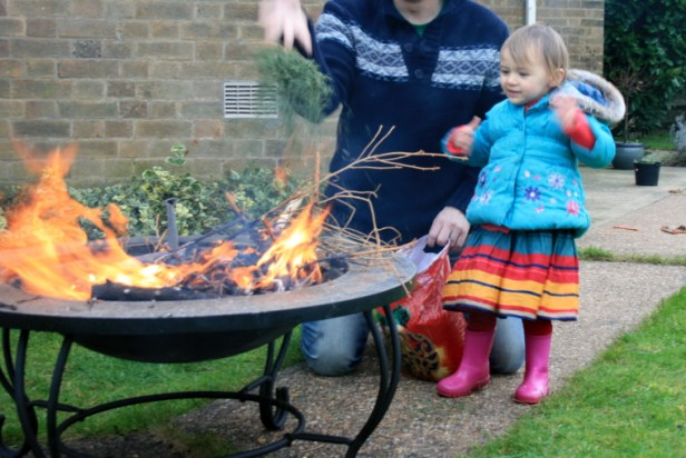 toddler-throwing-fir-tree-twigs-onto-firepit-in-garden