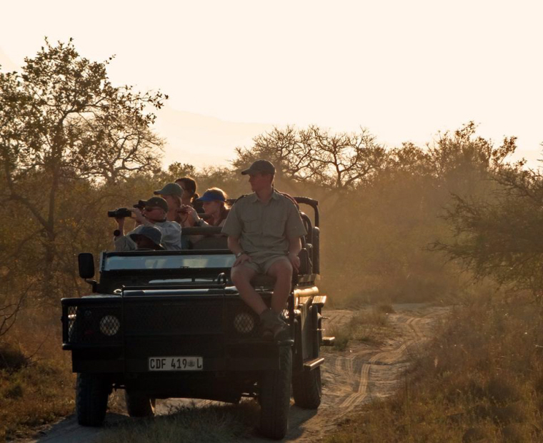 Image of ranger-sitting-on-bonnet-of-jeep-with-safari-passengers-on-board in African bush
