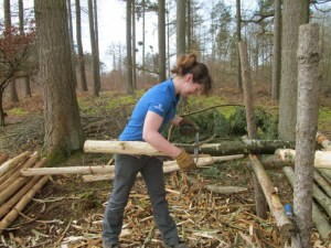 Image of woman-in-forest-cutting-logs-on-a-frame
