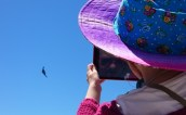 Image of girl taking photo of B2 stealth bomber