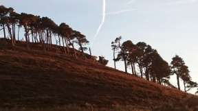 Image of steep hillside with pine trees in silhouette on the ridge and Hanging Crag rock at the edge, aircraft trail in the sky