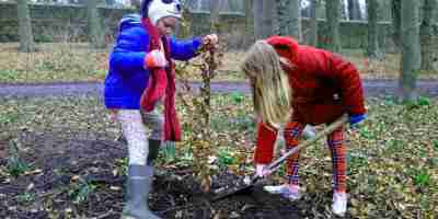 Image of girl in red coat and tartan trousers digging soil around a beech tree sapling being held by girl with blue coat and wellies in woodland