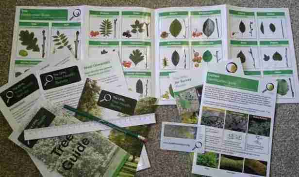 Image of tree identification pack with measuring tape, pencil and magnifier