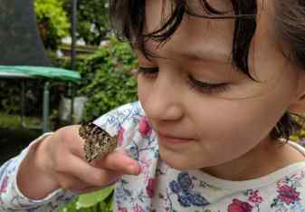 Image of close up of child's captivated face looking at sitting butterfly on child's hand