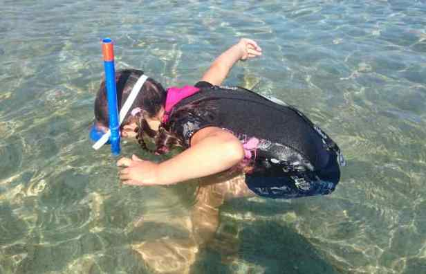 Image of child in shortie black and pink wetsuit standing in crystal sea bent forward with face under water wearing snorkel and mask