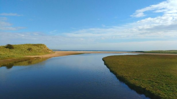 Image of still estuary water flowing through grassy sand dunes to the sea