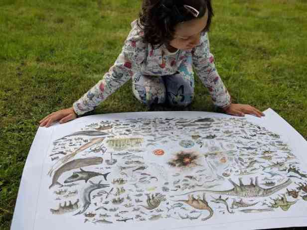 Image of girl in patterned top kneeling on grass examining large poster drawing of animals, birds, dinosaurs etc