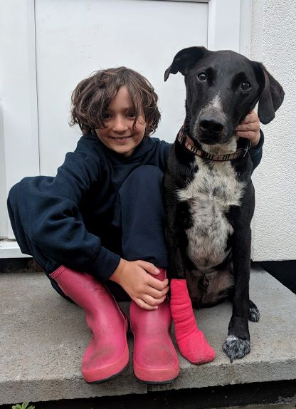 Image of girl in dark clothes and pink boots cuddling black dog with pink dressing on one foot