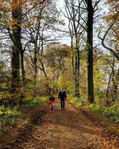Image of man and child walking on dirt track through woodland