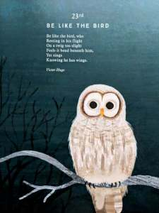 Image of illustrated page from poetry book with owl and poem Be Like a Bird
