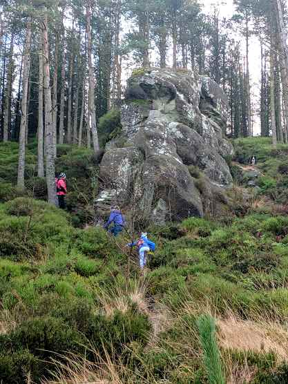 Image of large rocky outcrop on edge of woody hillside